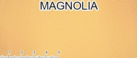 Pelle primo fiore Magnolia