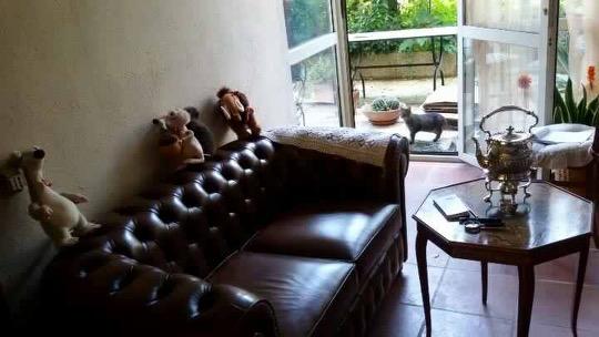 Divano chesterfield 2 posti vama divani for Casa del divano